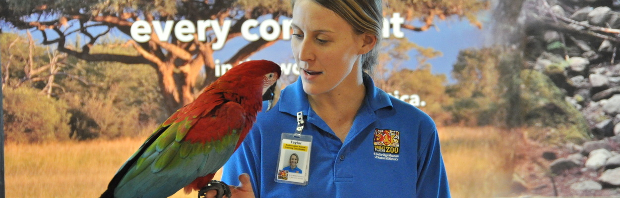 Zoo Educator With Macaw