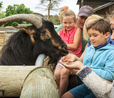 Children feeding goat at the Great Plains Zoo